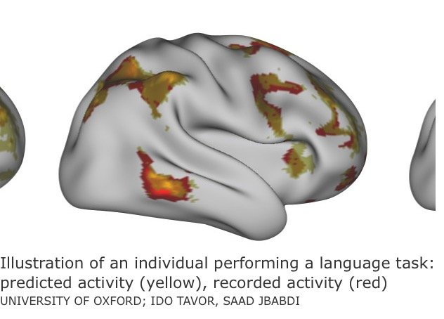 New Research: Brain Scans Predict Cognitive Performance [Premium]