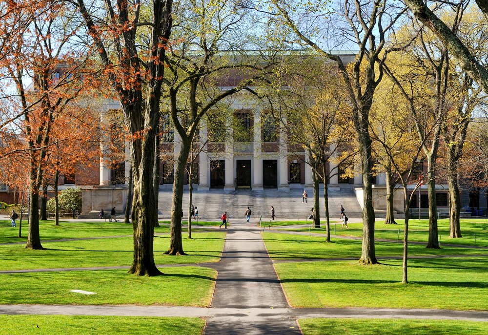 The Best (and Worst) Colleges for Dyslexia - (College Rankings