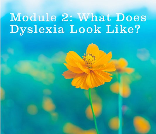 Module 2 – What's Dyslexia Look Like and What's My Role?