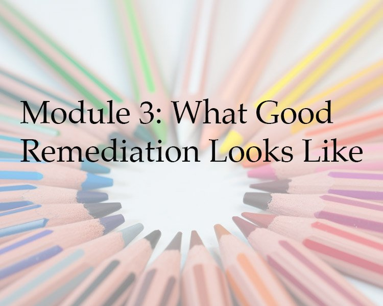 Module 3: What Does Good Dyslexia Remediation Look Like?