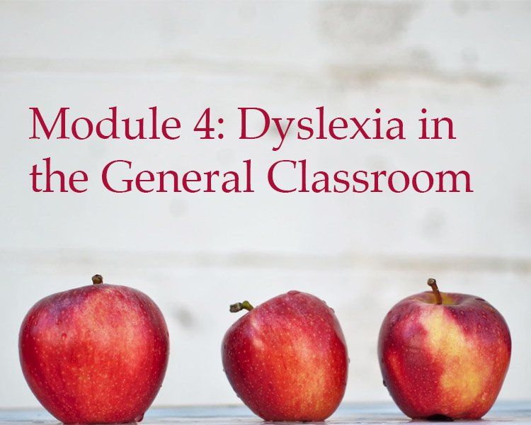 Module 4 Dyslexia in the General Classroom